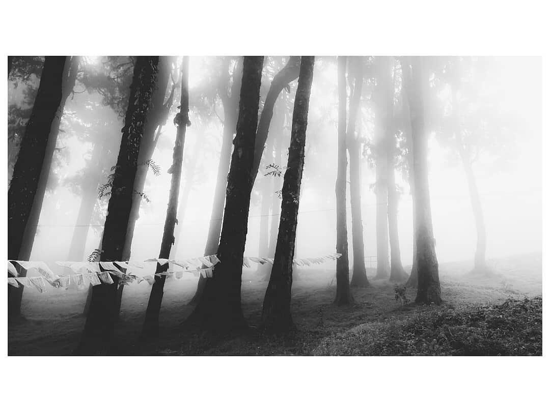 Photography by : Soumen Mandal