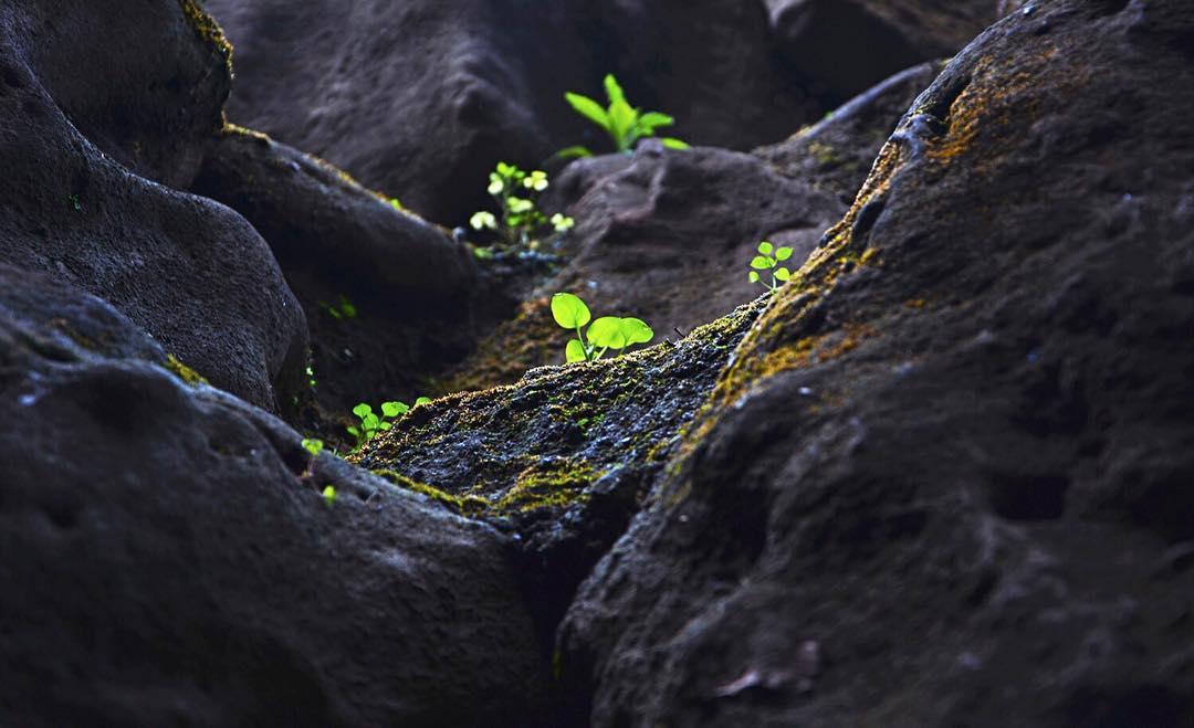 Photography by : Vishal Bhagat